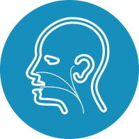 Otolaryngology (E.N.T)